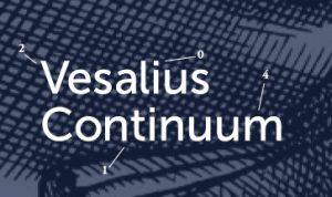 veslius continuum