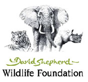 logo-david-shepard-wildlife-foundation-175x162px