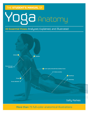 anatomy of yoga book cover